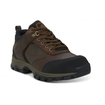 Timberland Mt. Maddsen Waterproof Brown (F7) 9530A Mens Trainers